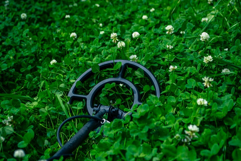 search coil in the grass.
