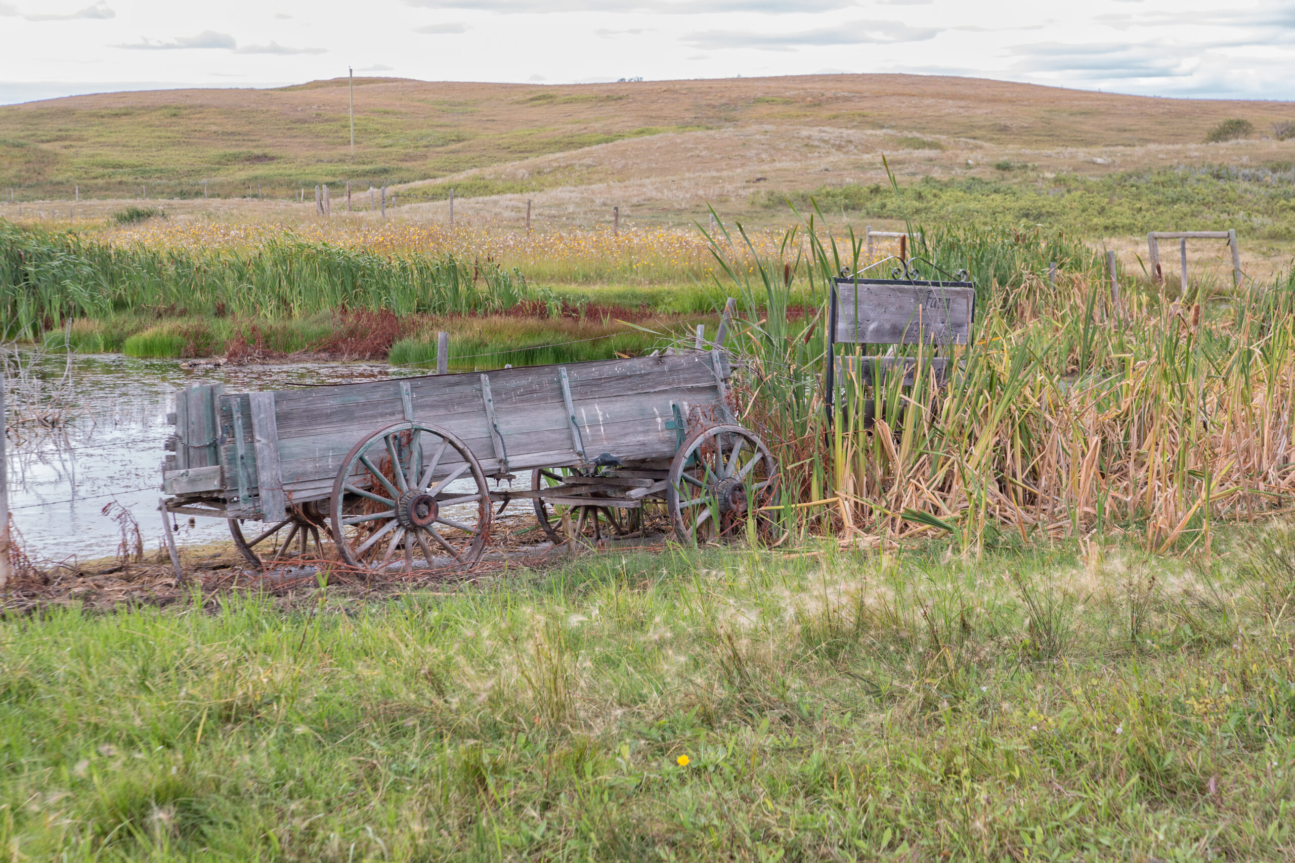 old broken horse drawn wagon sitting by a pond