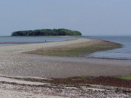 Charles Island at Low Tide