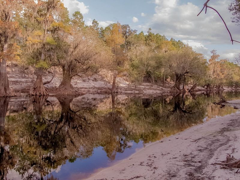 Swanee River in Florida